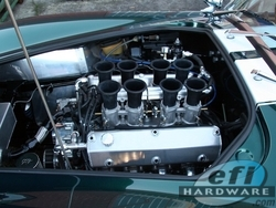 Cobra V8 Stack Injection